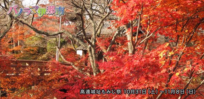 高遠城址もみじ祭 10月31日(土)〜11月8日(日)